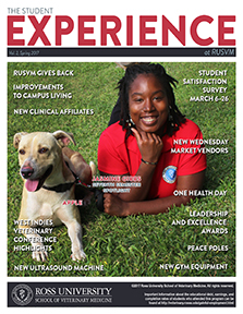 Spring 2017 Student Experience newsletter