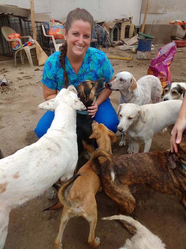 Ross Vet student with animals in Peru